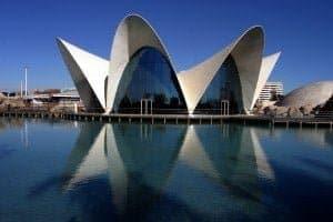 Programa de cursos de Español en Valencia para grupos 2