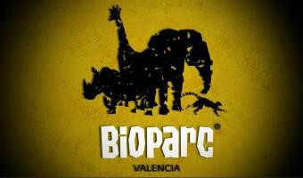 Valencia-Bioparc.jpg