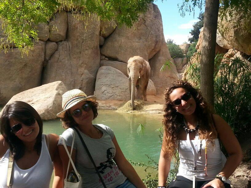 Trois femmes dans un zoo à Valence