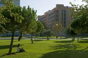Escuela de verano para adolescentes en Valencia 5